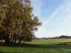 2008-10-10-morgens-8-30-uckermark