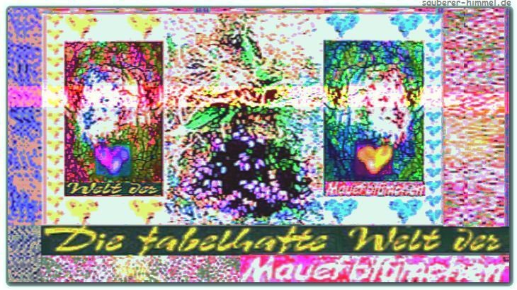 Die fabelhafte Welt der Mauerbluemchen