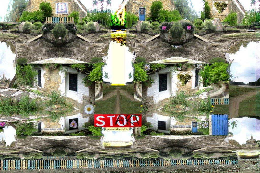 Land der Mauerbluemchen