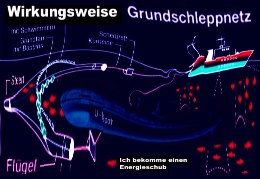 Wetterextreme Archive - sauberer-himmel.de