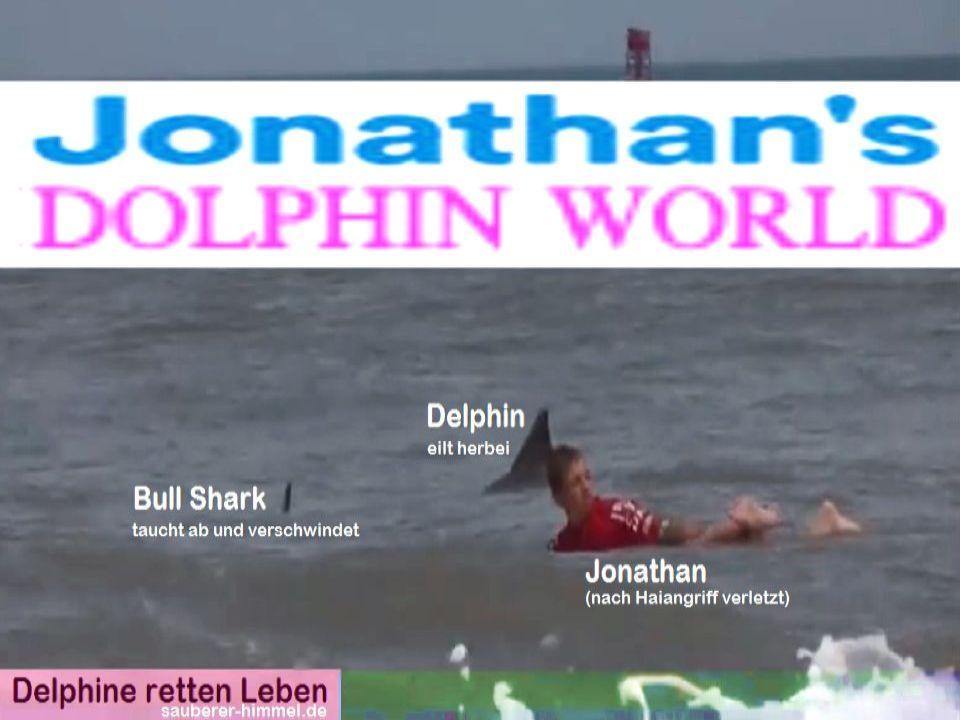 Das-Zweite-Leben-von-Jonathan